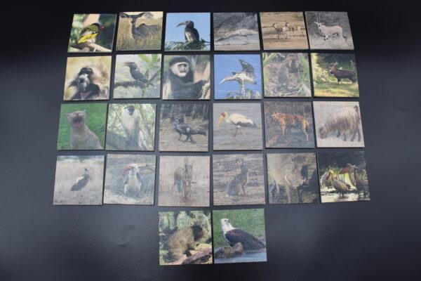 Die Spielkarten dieses Memo werden aus FSC-zertifiziertem Holz aus und in Deutschland produziert – also MADE IN GERMANY